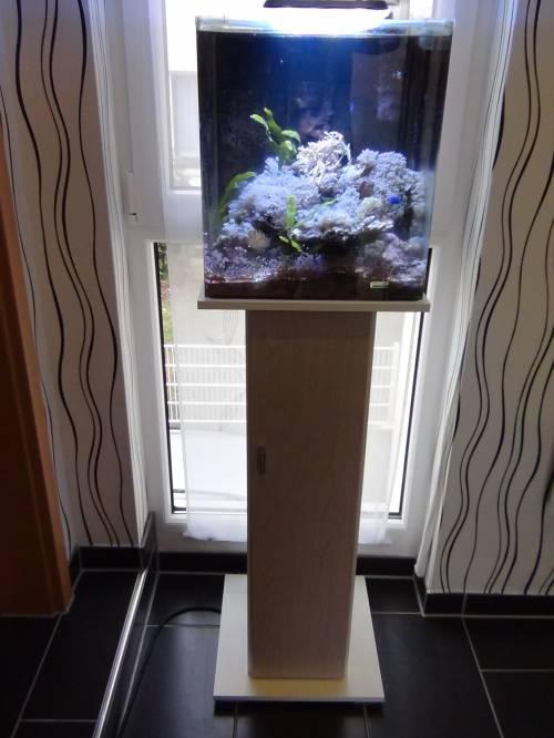 Niedlich Aquarium Unterschrank Bilder - Die Kinderzimmer Design ...